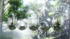 Close up render glass ornaments. Render Image, 3d Rendering, Glass Ornaments, Glass Vase, Architecture, Beautiful, Home Decor, The Creation, Interiors