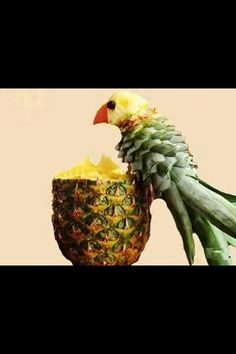 Parrot fruit display
