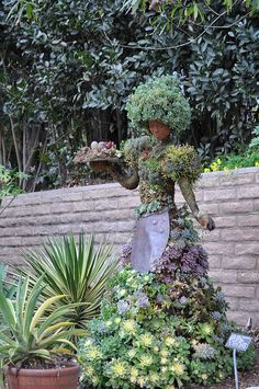 Plant Woman by pamelainob (Pamela Schreckengost), via Flickr