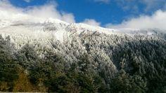 cool 玉山下雪了!積雪逾1公分   玉山今清晨下雪。圖為玉山。(資料照,&#... http://taiwanese.moe/archives/599431