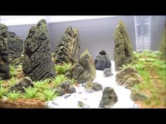 'Iwagumi' ADA aquascape step by step Aquascaping, Fish Tank Themes, Nano Cube, Fish Room, Fish Tank Design, Saltwater Aquarium Fish, Rocky Shore, Rock Formations, Cat Drawing