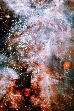 the core of the Tarantula Nebula --This world is really awesome. The woman who…