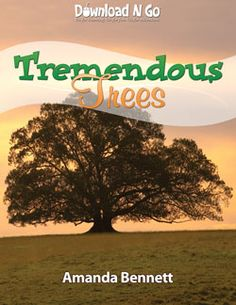 TremendousTrees - an exciting new way to explore every kid's dream of having a tree house! Tremendous Trees is a Download N Go unit study by Amanda Bennett, developed for grades K-4. Climb up!