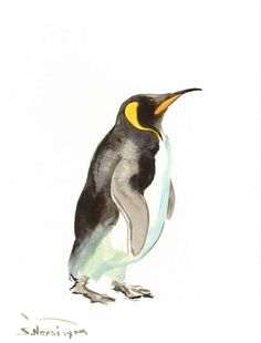 King Penguin, original watercolor painting, 12 X 9 in, penguin art, animal art