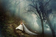 Photograph *** by Sergey Ivanov (Seriv) on 500px