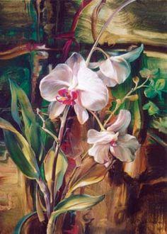 Flores - Carla Simons - Picasa Web Albums