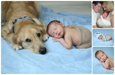 Newborn with dog, Golden retriever