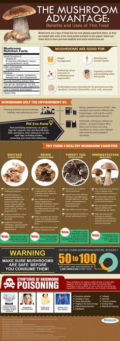 Infographic001-mushrooms.jpg 562×1,600 pixels