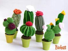 Crochet cactus                                                                                                                                                     Mehr