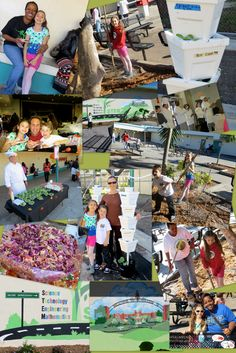 This weekend our daughter's school hosted their first Harvest Festival. It was fantastic! The school has planted vertical hydroponic gardens with spinach, broccoli, kholrabi, egglplant, bok choy, and much more.  Read the full story at http://www.Facebook.com/MitchSpinach   Mitch Spinach of course will be involved in educating the students about eating healthy. Get your school involved with a Mitch Spinach 30% back fundraiser this school year! Learn more at…