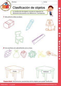 Clasificación de objetos: Primer grado