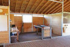 horse work area, vet area