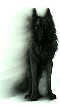 This is the bloodThirst Pack Leader. Scar, he's the most dangerous wolf ever. mess with him say good bye to your little wolf life ): He attacked my sister one day. never going to forget that ; Anime Wolf, Wolf Tattoos, Wolf Spirit, Spirit Animal, Fantasy Creatures, Mythical Creatures, Fenrir Tattoo, Fantasy Wolf, Fantasy Art