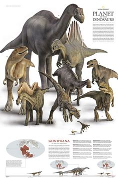 I don't know where your love and obsession of all things dinosaur comes from. but Rock On little girl Cool Dinosaurs, Prehistoric Dinosaurs, Prehistoric World, Dinosaur Fossils, Dinosaur Art, Prehistoric Creatures, Reptiles, Mammals, Jurrassic Park