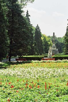 | Copou gardens, Iasi -Romania Once In A Lifetime, Belgium, United Kingdom, Cities, Beautiful Places, Scenery, Places To Visit, To Go, Germany