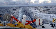 Photo sent from the boat La Fabrique, on November 11th, 2016 - Photo Alan Roura Photo envoyée depuis le bateau La Fabrique le 11 Novembre 2016 -  Photo Alan Roura