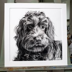 Charcoal pet portrait by Chloé Brown 2020 Charcoal Art, Charcoal Drawing, Chloe Brown, Brown Art, Contemporary Artwork, Animal Paintings, Pet Portraits, Animal Photography, Original Artwork