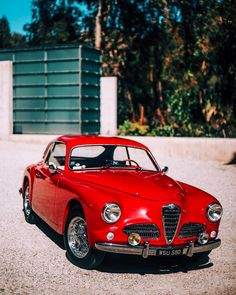 """tedgushue: """"Shooting challenge: @millemigliamartinracing's Rosso Alfa in 3:30PM Sun at 1.5 http://ift.tt/2oWnFDM """""""
