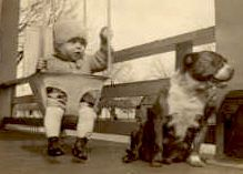 """Astoundingly, for most of our history America's nickname for Pit Bulls was """"The Nanny Dog"""". For generations if you had children and wanted to keep them safe you wanted a pit bull, the dog that was the most reliable of any breed with children or adults."""