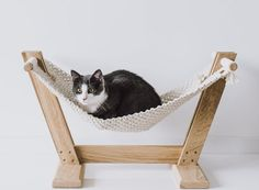 Handmade Macrame Cat Hammock From MakaArt Crafts - Design Milk Cat Lover Gifts, Cat Lovers, Cardboard Cat House, Cat Castle, Cat Hammock, Pet Furniture, Modern Furniture, Diy Stuffed Animals, Animal Quotes