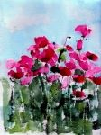 Watercolor Paintings - Maddys Poppies by Anne Duke