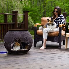 20 Awesome Outdoor Dog Houses