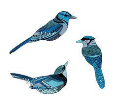 Blue Jay Tribal Tattoo Designs | Traditional Blue Jay Tattoo Tattoos Designs Ideas