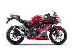 2017 Kawasaki Ninja 250 ABS Sun & Fun Motorsports 155 Escort LN, Iowa City, Iowa 319-338-1077