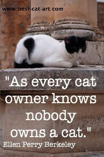 Cats have servants, not owners.