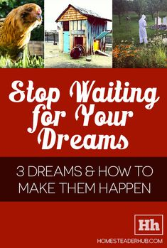 Stop Waiting for Your Dreams | Homesteader hub