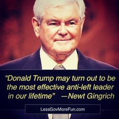 """Donald #Trump may turn out to be the most effective anti-left leader in our lifetime"" --Newt Gingrich #MAGA #Crooked #UniteRight  #sorry #Debate #wikileaks"