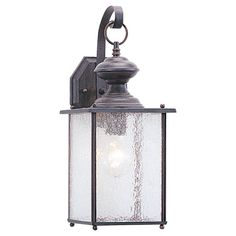 Juan 1-Light Outdoor Wall Lantern