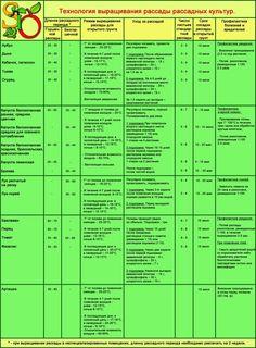 Календарь высевания рассады и высаживания в грунт рассадных огородных растений.