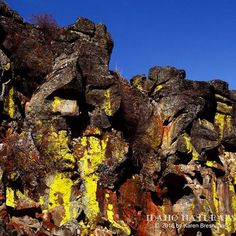 The growth of lichen on lava cliffs near Idaho City,  provides amazing color and contrast. #lava #rocks #geology #land #earth #Idaho #nature #colorful #amazing #outdoors #adventure #explore