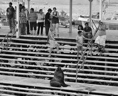 Muelle Iquique