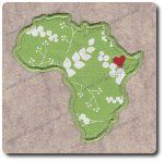 My heart is in Ethiopia Embroidery Applique.  Adoption is a long emotional roller coaster.