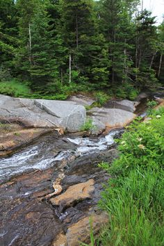 New Hampshire - White Mountain National Forest