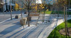 Public-plaza-and-coorporate-roof-garden-landscape-architecture-massachusetts-10 « Landscape Architecture Works   Landezine