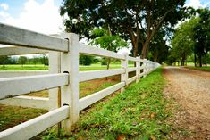Classic white post and rail fence design where the rails are inserted into the posts.