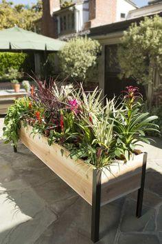 Jardiniere sur une grande terrasse extérieure