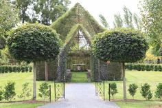 Barry Cox, the man who grew a church from trees. The gate to the church came from Barry's family farm in Shannon.