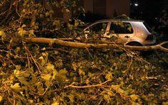 Vijf doden bij hevig noodweer in Duitsland - De aarde - De Morgen