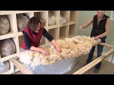 How to Skirt an Alpaca Fleece - YouTube