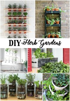 These Creative DIY Herb Gardens for Any Space are so pretty and simple and there are great ideas for indoor or outdoor! Make your own herb garden and have fresh herbs all year long!