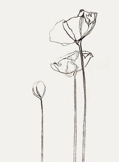 minimalist sketch flower - Google Search