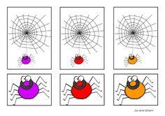 Spinnen 1-1 relatie
