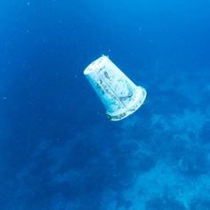 A roundup of peer-reviewed research that clearly implicates plastic as the dominant material littering the ocean, with heavy impacts on fish, mammals and sea birds.