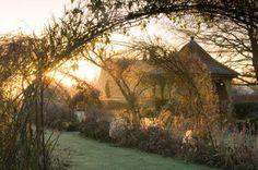 Lovely English garden early morn.