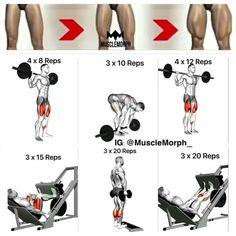 """16.9k Likes, 184 Comments - SHREDDED UNION (@shredded.union) on Instagram: """"Leg day? Try this workout.. @shredded.union #shreddedunion - Via @musclemorph_"""""""