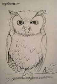 Imagini pentru desene in creion Owl, Doodles, Bird, Drawings, Animals, Animales, Animaux, Owls, Birds
